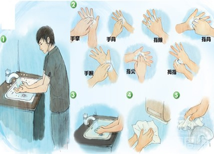 幼儿园洗手 部曲